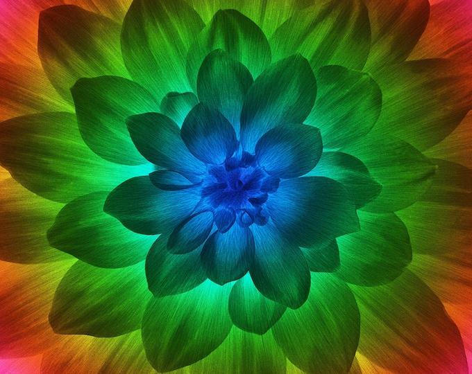 Spectrum Large Flower 43in x 43in Digitally Printed