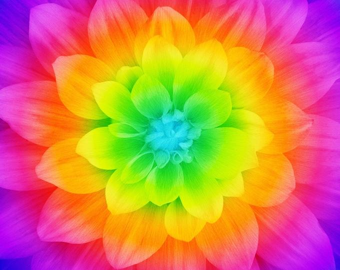 """HOFF, PRISM FLOWER Bright, 45"""" x 45"""""""