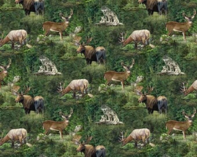 TIMBERLAND - All Over Animal Print - Northcott Fabrics