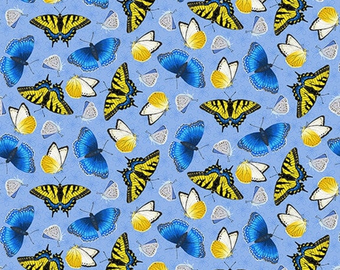 HG, Blue/Yellow Butterfly, Sunny Sunflowers