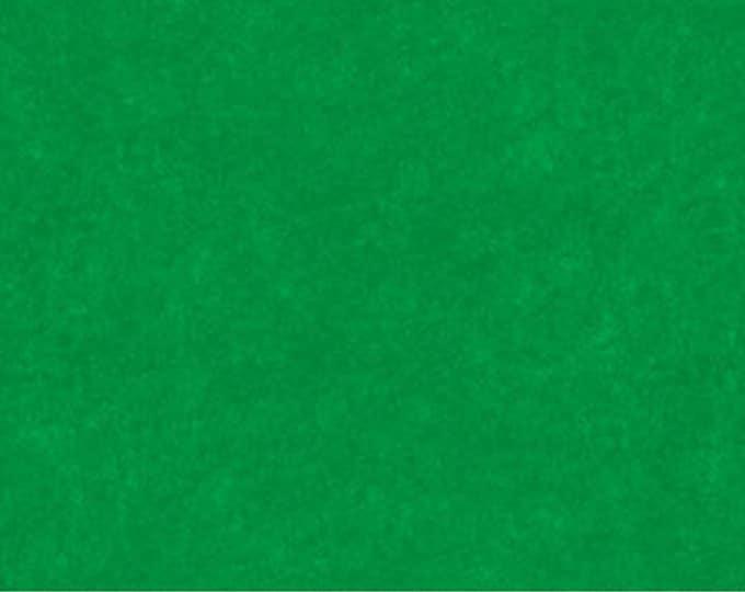 NORTHCOTT, DAPPLE Kelly 10000-72