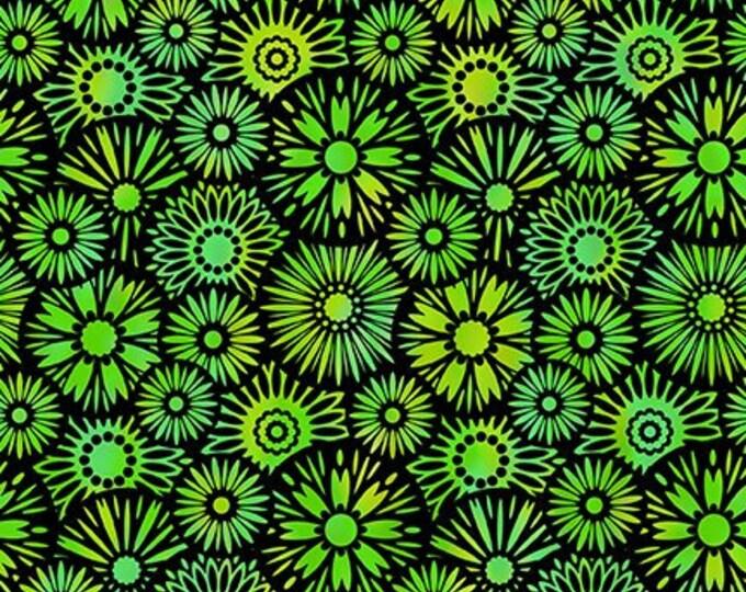 JASON YENTER, Unusual gardens 2 Black and Green Flowers