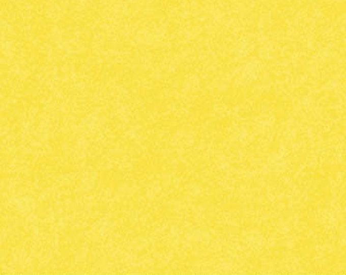 NORTHCOTT, DAPPLE Lemonade 10000-50