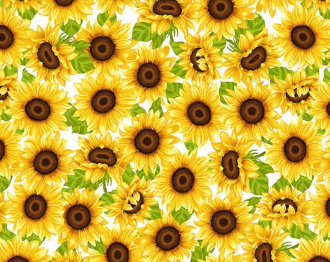 HG, Sunflowers white background, Sunny Sunflowers
