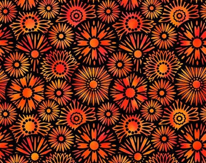 JASON YENTER, Unusual gardens 2 Black and Red Flowers
