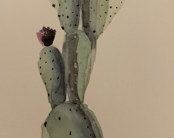 Watercolor Plants and Nature