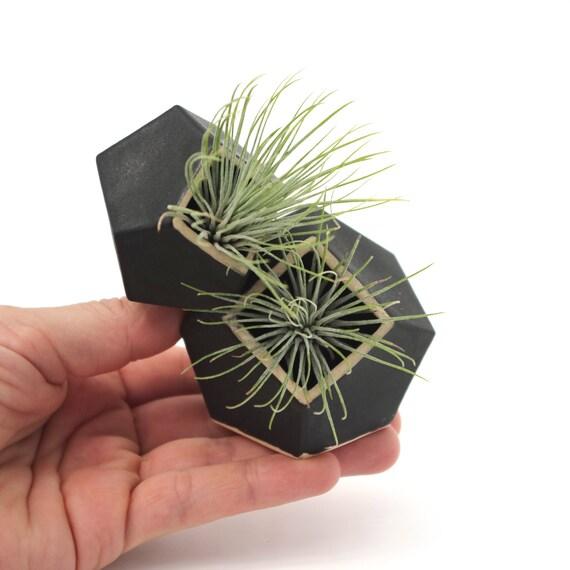 Air Plant Holder /& Succulent Pot Black Molecule Pot Double