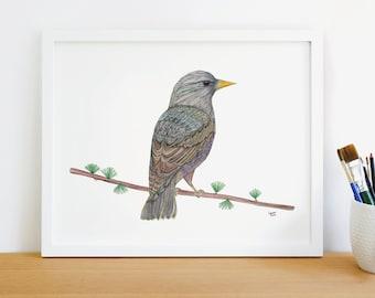 Mid-Rise Capri Abstract Graphic Purple Bird