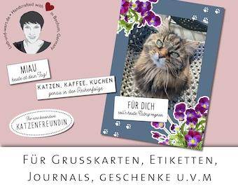 Textideen für Katzenmenschen, druckbare PDFs, Ephmera, WordArts für Grußkarten, Scrapbooking, Journaling, Geschenke, Etiketten