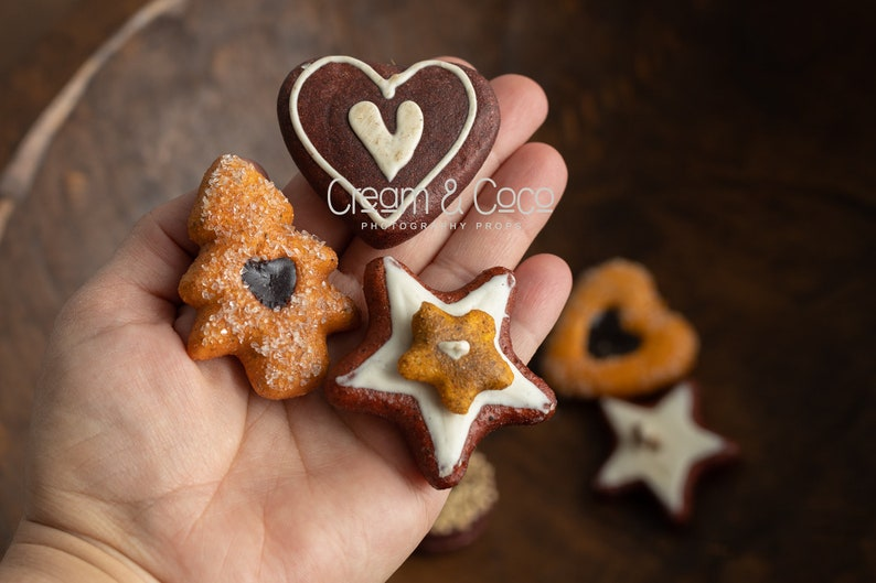 RTS Christmas Cookies Set Prop for Newborn Sessions