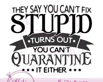 You Can/'t Fix Stupid Decal//Sticker Here/'s your sign 4x4