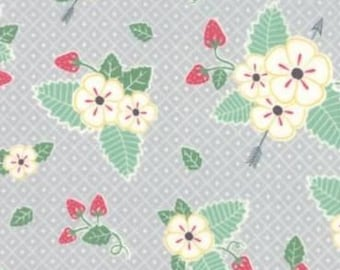MODA Fabric ~ PEDAL PUSHERS ~ by Lauren /& Jessi Jung by the 1//2 yard 25083 15