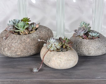 Handmade Stone Succulent Pots   Natural Rock Planters