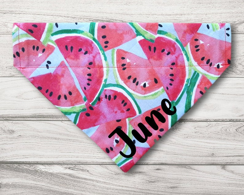 Summer time dog or cat scarf neckerchief personalized Slides on over the collar Watermelon Pet Bandana plaid