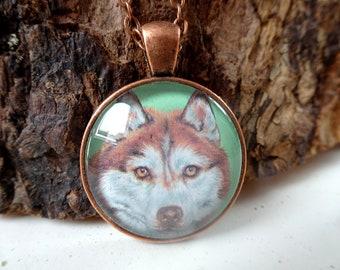 Halskette Set Kette Anhänger 3D Siberian Husky Hund Wolf Kopf Versilbert