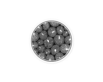Noctiluca: Bubble-free stickers