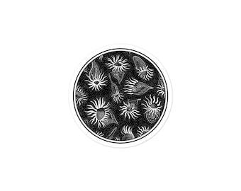 Strombidium: Bubble-free stickers