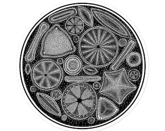 Diatom: Bubble-free stickers