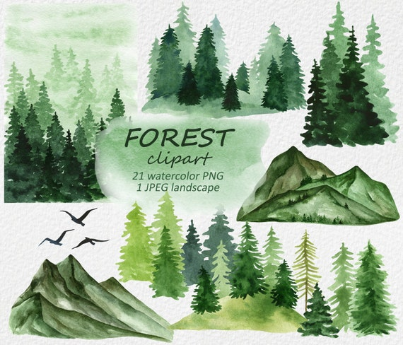 watercolor forest clipart woodland pine trees landscape etsy etsy