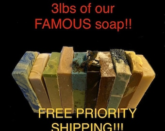 3lbs 10 full size bars of our famous Huge Silk and Goat Milk olive oil soaps FREE PRIORITY SHIPPING handmade homemade natural soap