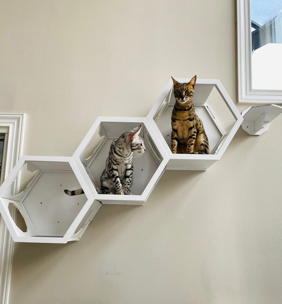 Wood Cat Shelves Wall Bed, Wall Mounted Cat Furniture Nz