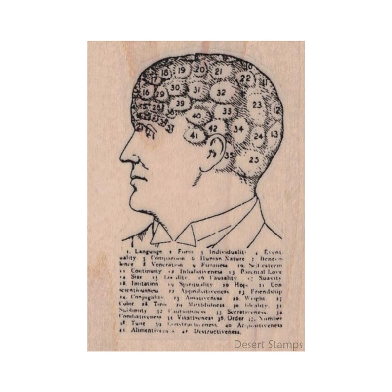 Mixed Media Neurology Stamp Advertisement Stamp Pseudo Science Stamp Numbered Head RUBBER STAMP Brain Stamp Vintage Ad Stamp