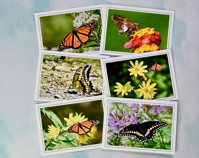 Butterfly Photo Note Cards - Blank Note Cards