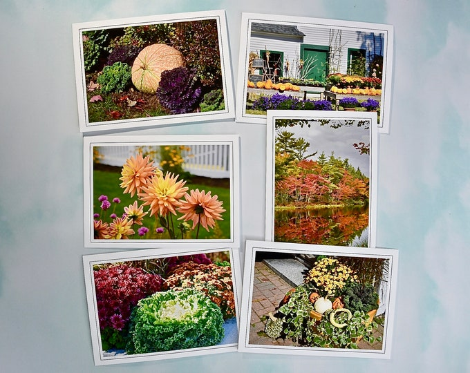 Autumn - Fall Photo Note Cards - Blank Inside - Set of 6