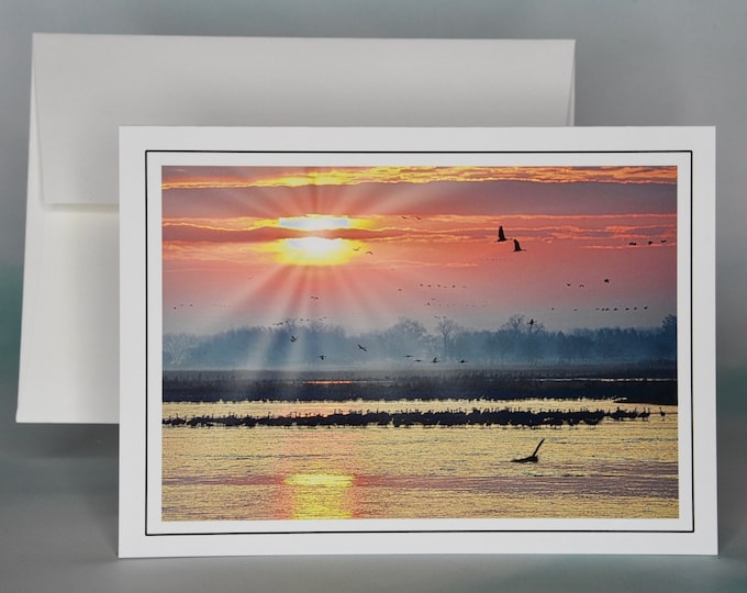 Sandhill Cranes at Sunrise Photo Note Card - Blank Note Card