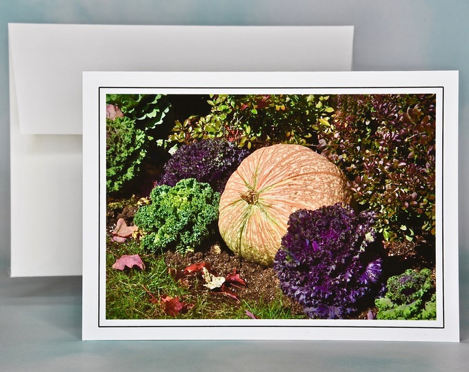 Autumn - Fall Photo Note Card - Blank Note Card - Variegated Pumpkin and Decorate Kale