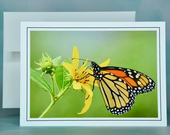 Butterfly Note Card - Monarch on Jerusalem Artichoke - Blank Note Card