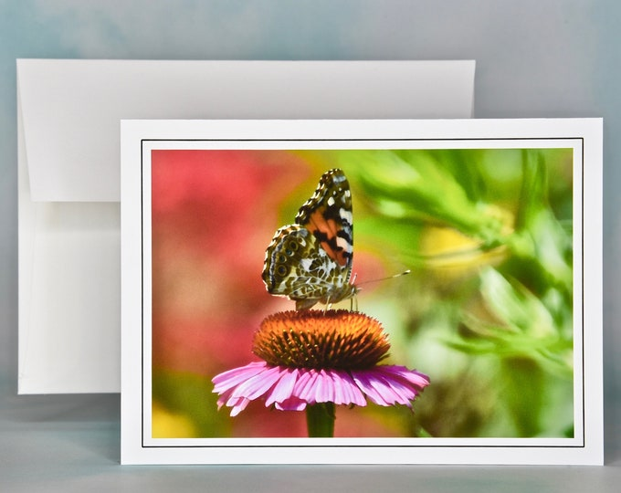 Butterfly on Cone Flower Blank Photo Note Card - Painted Lady Note Card