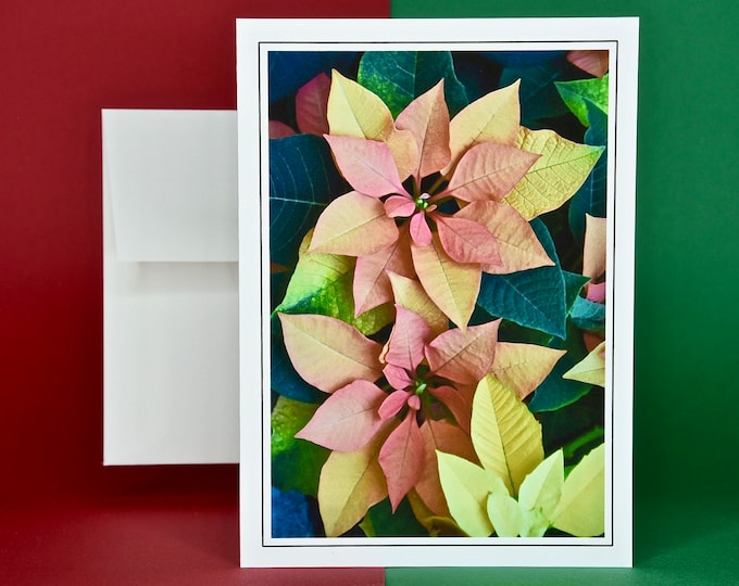 Christmas Holiday Card SAVE! - Buy MORE and SAVE - Euphorbia Autumn Leaves Poinsettia Portrait