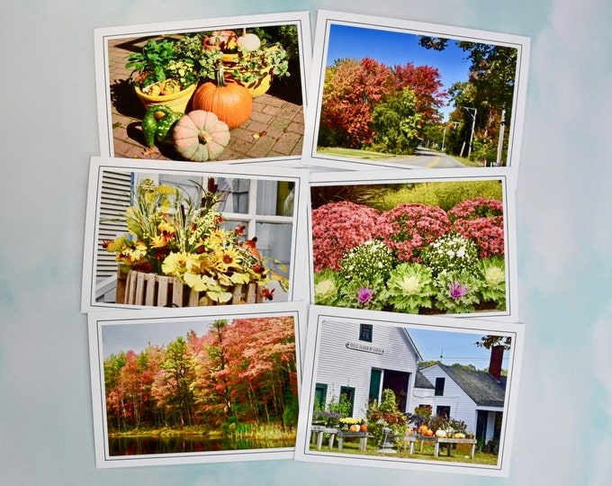 Autumn - Fall Photo Note Cards - Blank Note Cards - Set of 6