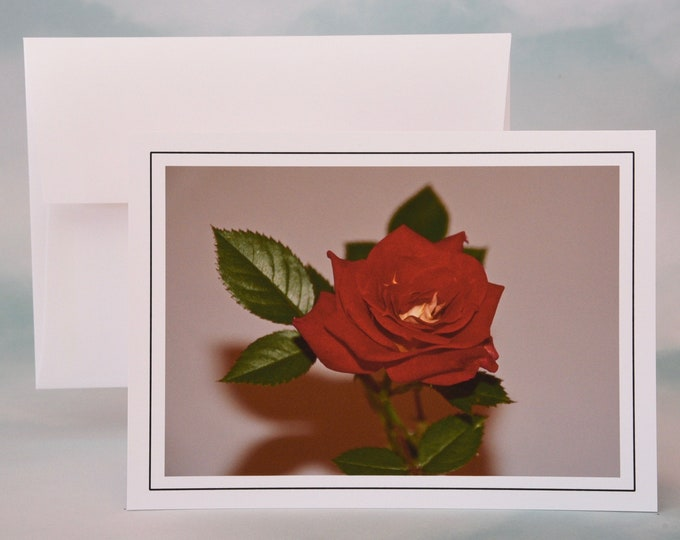 Regal Red Rose Photo Note Card - Blank Card - All Occasion Card - Greeting Card