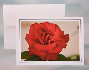 Red Rose Photo Note Card - Blank Note Card