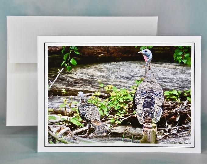Autumn - Fall Photo Note Card - Blank Note Card - Turkeys