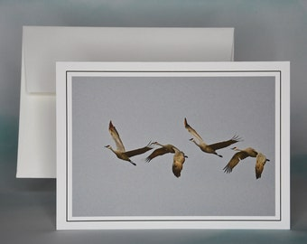 Sandhill Cranes in Flight Photo Note Card - Blank Note Card - All Occasion Card