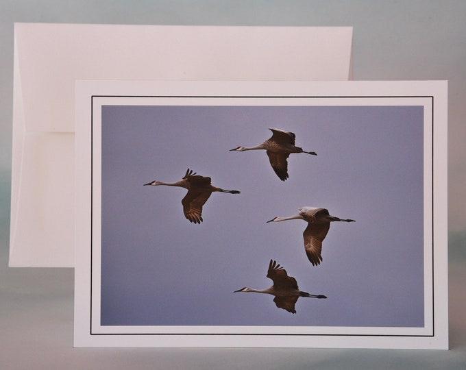 Sandhill Cranes in Flight Photo Note Card - Blank Note Card