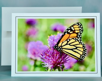 Butterfly Note Card - Monarch on Common Globe Amaranth - Blank Note Card