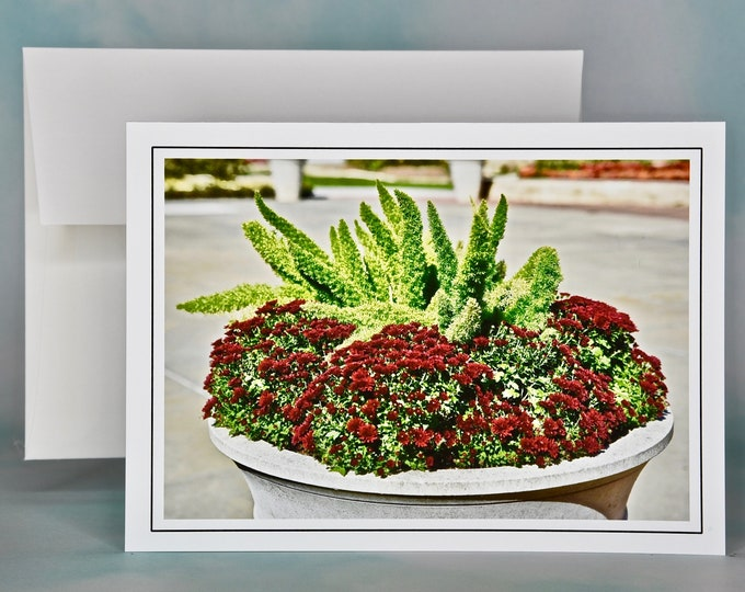 Autumn - Fall Photo Note Card - Blank Note Card - Foxtails Above the Mums