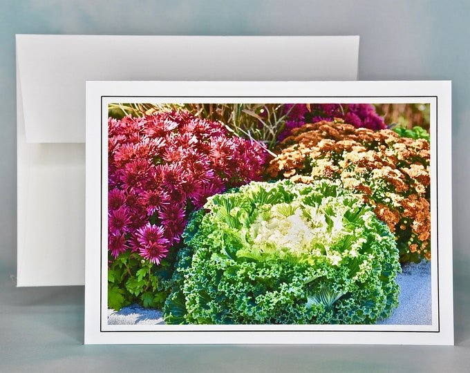 Autumn - Fall Photo Note Card - Blank Note Card - Decorative Kale and Mums