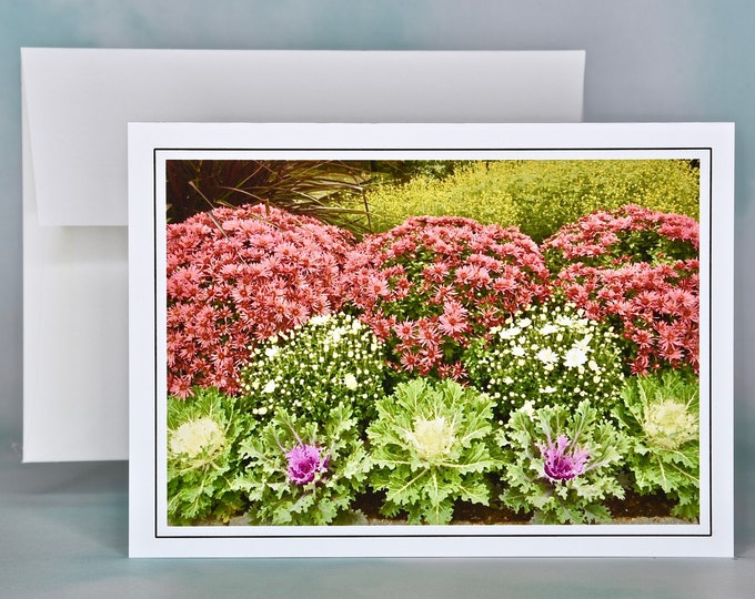 Autumn - Fall Photo Note Card - Blank Note Card - Mums & Decorative Kale