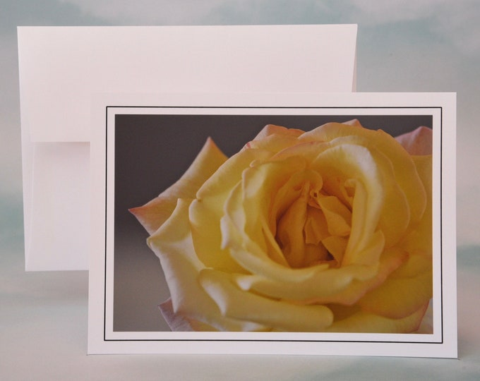 Yellow Rose Photo Note Card - Blank Note Card - Greeting Card