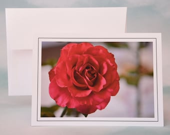 Brilliant Red Rose Photo Note Card - Blank Note Card - Greeting Card
