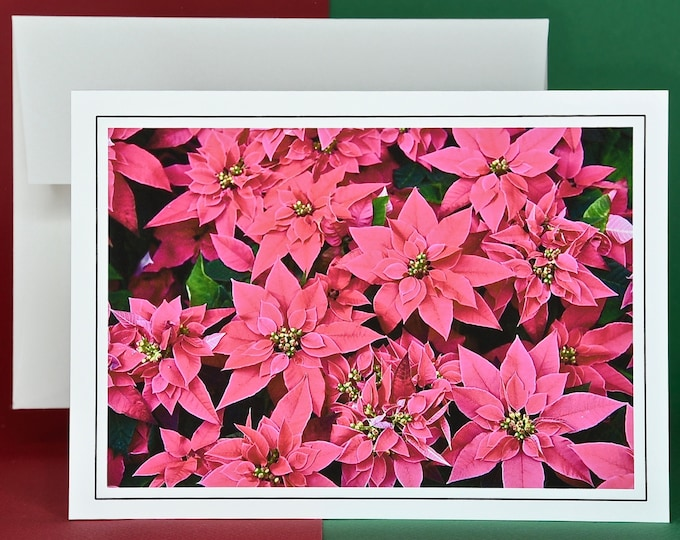 Christmas Holiday Card SAVE! - Buy MORE and SAVE - Pink Poinsettia Party