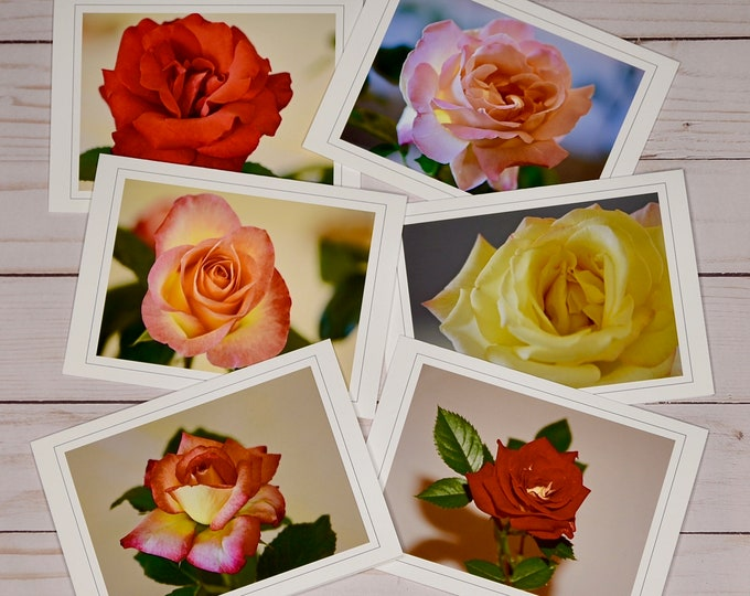 Rose Photo Note Card Collection - Blank Note Cards