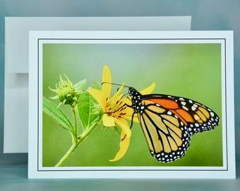 Butterfly Note Card - Monarch on Jerusalem Artichoke - Blank Note Card