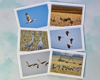 Sandhill Crane Blank Photo Note Cards - Note Cards with Envelopes