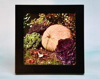 Small Framed Fall/Autumn Art - Fall/Autumn - Wall or Tabletop